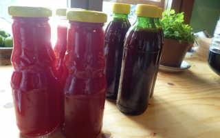 Как приготовить морс из брусники: рецепты, польза и вред