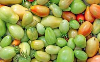 Как дозреть зеленые помидоры в домашних условиях