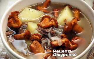 Суп из свежих лисичек и сушеных: пошаговые рецепты с фото