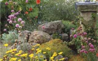 Рокарий: как сделать каменистый сад или горку