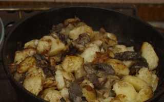 Жареные подосиновики: с картошкой и луком, на сковороде и в мультиварке, рецепты