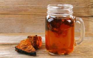 Чай из чаги: полезные свойства, как правильно приготовить и пить, рецепты, противопоказания