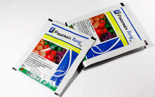 Ридомил Голд: инструкция по применению для томатов, отзывы