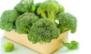 Капуста брокколи: польза и вред, состав, можно ли при беременности, противопоказания