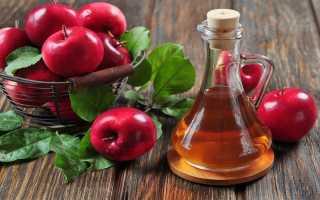 Маринованные огурцы с яблочным уксусом на зиму: сколько уксуса добавлять, как консервировать, солить