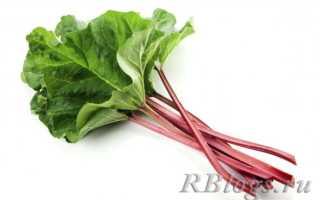 Что такое ревень: фото, как выглядит, овощ или фрукт, как использовать, вкус, запах, где и как растет