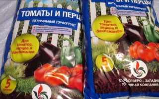 Грунт для рассады томатов и перцев: отзывы