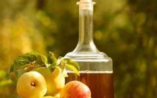 Крепленое домашнее вино из яблок