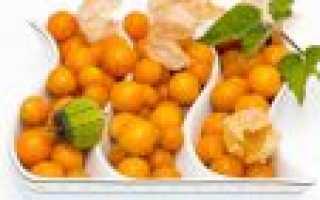Физалис съедобный: как употреблять в пищу, чем полезен, выращивание и уход