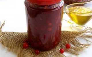 Калина красная: рецепты на зиму – заготовки калины