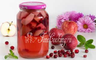 Компот из брусники: простые рецепты на зиму без стерилизации, с яблоками, с клюквой