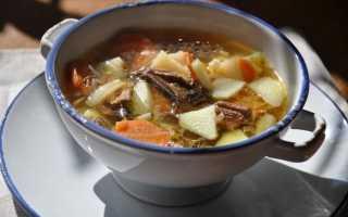 Груздянка из свежих груздей: как сварить суп, пошаговые рецепты с фото