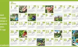 Лунный (посевной) календарь садовода-огородника на июнь 2020 года