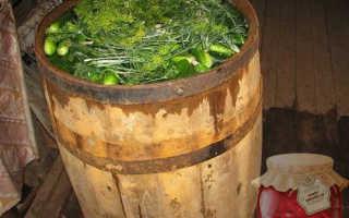 Засолка огурцов в бочке или дубовой кадке на зиму: рецепты, видео