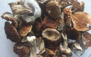 Соус из белых грибов: как приготовить из сушеных, замороженных и свежих грибов, рецепты