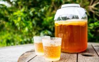 Можно ли чайный гриб: при язве желудка, двенадцатиперстной кишки, при повышенной кислотности, при гастрите, как правильно пить