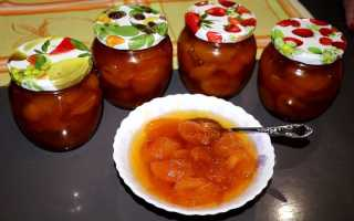 Варенье из абрикосов на зиму: без косточек, с косточками, «Пятиминутка», «Янтарное», «Королевское»
