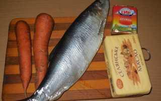 Паштет из селедки: классический рецепт с маслом, морковью, плавленым сыром, яйцом
