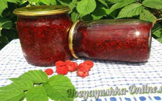 Варенье из малины без сахара: пошаговые рецепты на зиму с фото