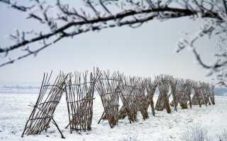 Снегозадержание на полях, на участке, в теплице, как влияет на рост растений, приемы, видео