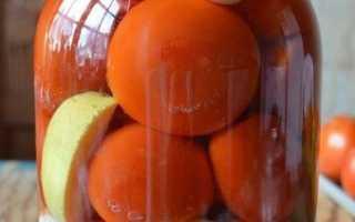 Помидоры, маринованные с яблоками на зиму: 13 рецептов
