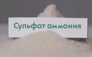Сульфат аммония, как удобрение: что это такое, состав, как применять на пшенице, для растений