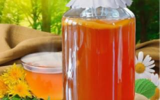 Чайный гриб: как правильно заправить, сколько дней настаивать