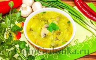 Грибной суп из шампиньонов с картофелем и вермишелью: как приготовить с курицей, из свежих, замороженных грибов, калорийность