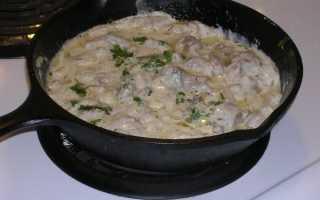 Вешенки в сметане: рецепты с луком, сыром, чесноком, мясом, картошкой