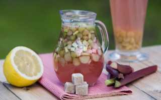 Квас из ревеня в домашних условиях: вкусные рецепты с апельсинами, лимонами, мятой