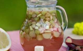 Компот из ревеня: рецепты приготовления с фото с яблоками, с клубникой, с лимоном