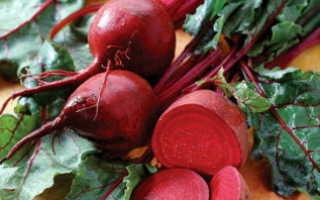 Рецепты икры из свеклы на зиму: «Пальчики оближешь», через мясорубку, с морковью, помидорами, жареная, острая,