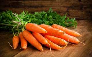 Морковь Красная без сердцевины: описание, фото, отзывы