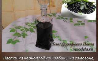 Наливка из черноплодной рябины в домашних условиях: на водке, на спирту, на самогоне