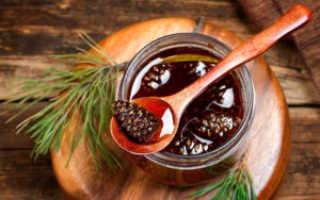 Варенье из сосновых шишек: польза и вред, рецепты, противопоказания