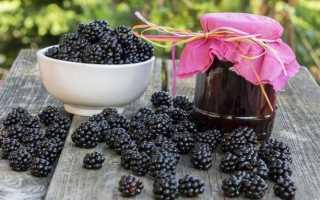 Варенье из ежевики на зиму: 21 рецепт – «Пятиминутка», с целыми ягодами, густое