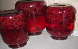 Компот из красной смородины: рецепты на зиму и в кастрюле с фото, на 3 литровую банку
