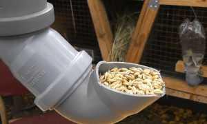 Бункерная кормушка для кроликов