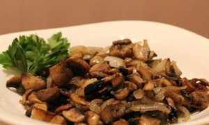 Белые грибы: сколько жарить свежие, замороженные, сушеные, рецепты
