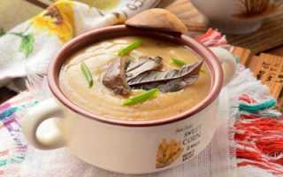 Суп-пюре из вешенок: как приготовить, рецепты со сливками и картошкой