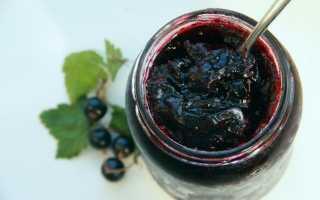 Варенье-желе из черной смородины: как сварить, рецепты на зиму