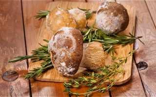 Заморозка подосиновиков: свежих, вареных, обработка перед заморозкой в морозилке