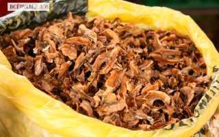 Перегородки грецких орехов: лечебные свойства и противопоказания, применение