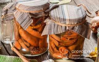 Рыжики в собственном соку: маринованные, соленые, рецепты на зиму