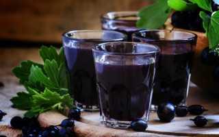 Домашняя наливка из смородины: на водке, спирту, самогоне, из забродивших ягод