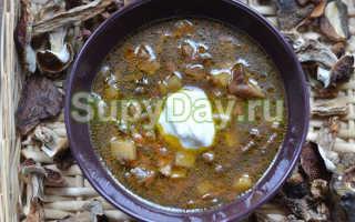 Суп из сушеных белых грибов: классический рецепт, с перловкой, курицей, мясом