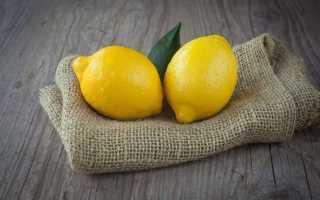 Вода с лимоном: польза и вред для организма, натощак, на ночь, как сделать, как правильно пить