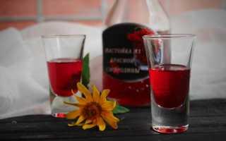 Наливка из красной смородины на водке: простые рецепты в домашних условиях