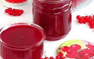 Повидло из красной смородины: пошаговые рецепты приготовления