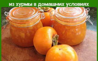 Рецепты варенья из хурмы